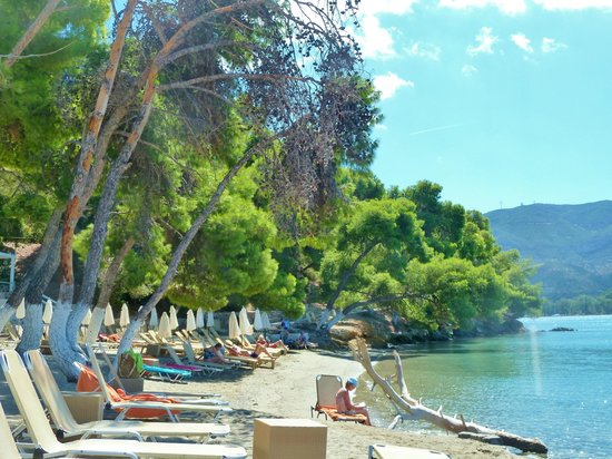 Xenia Poros Image Hotel: Private hotel beach