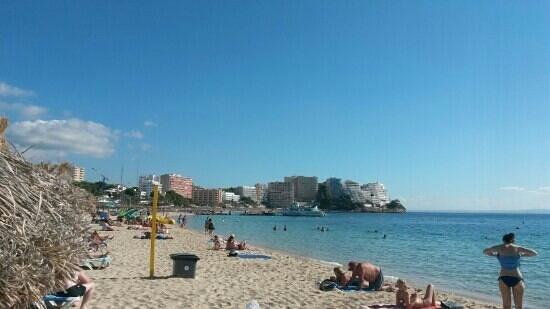 Sol y Vera Apartments: magaluf beach