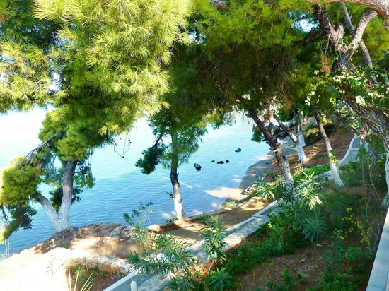 Xenia Poros Image Hotel: Along the path to the beach