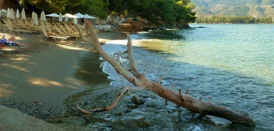 Xenia Poros Image Hotel: Beach area