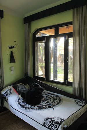 Sapana Village Lodge: A view of my bed and the elephant outside my window