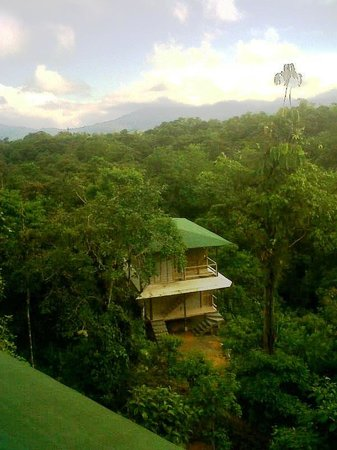 San Jorge de Milpe Eco-Lodge Orchid & Bird Reserve: 8 NEW Deluxe rustic Suites at Forest Lodge San Jorge de Milpe