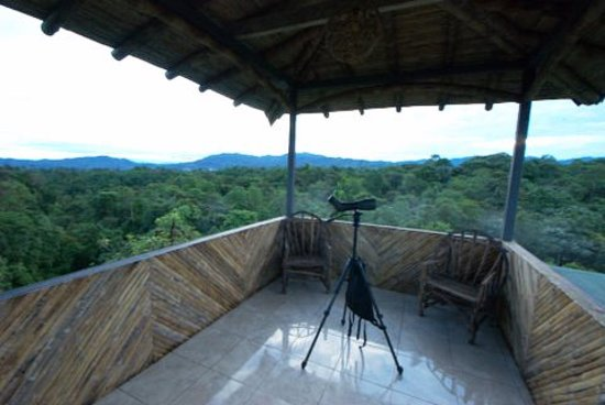 San Jorge de Milpe Eco-Lodge Orchid & Bird Reserve: Large Observation Deck overlooking canopy