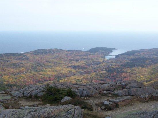 Cadillac Mountain: Fall Colours