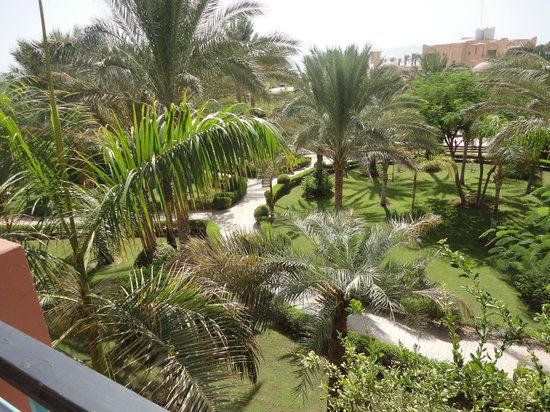TUI Magic Life Sharm el Sheikh: Garden view from room