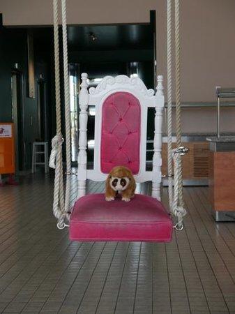 เดอะ มาร์มาร่า แอนทาลย่า โฮเต็ล: Our travel companion. pets allowed at this hotel!!!!