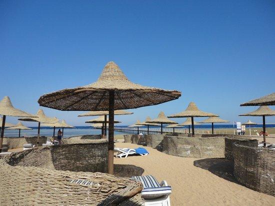 TUI Magic Life Sharm el Sheikh: Beach with own spacious areas