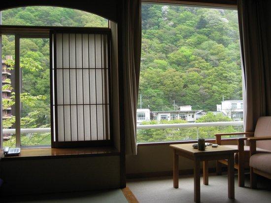 Kinugawa Plaza Hotel: 部屋からの眺め