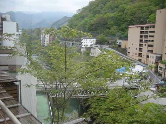 Kinugawa Plaza Hotel: 眺望