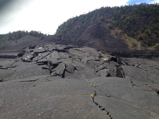 Kilauea Iki Trail: volcano bed