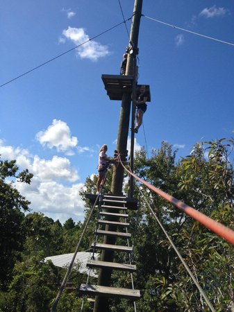 Treetop Trek: Climbing up to a zip line