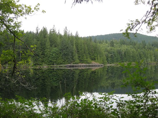 Inland Lake Provincial Park: View of the boardwalk from across the lake.