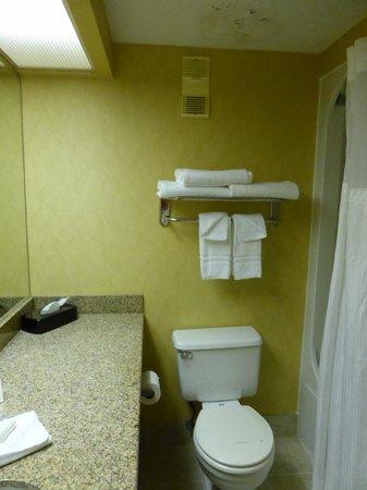 Best Western Hopkinsville : En-suite bathroom