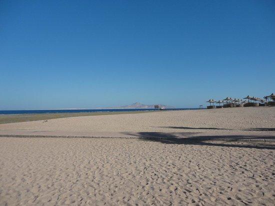 TUI Magic Life Sharm el Sheikh: Beach in late afternoon sun