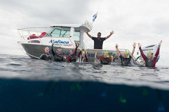 Whale Swim, Fish & Dive Tours: Yeap! We swam with Mum & Calf:)