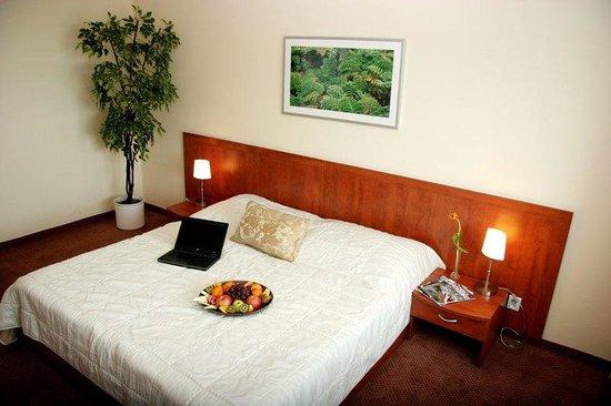 Hotel Bratislava: Suite