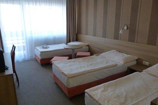Hotel Bratislava: Standard Triple