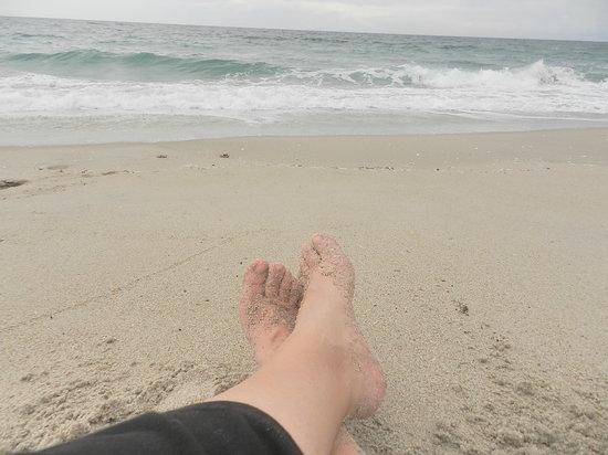 John D. MacArthur Beach State Park: What I enjoy doing at the beach