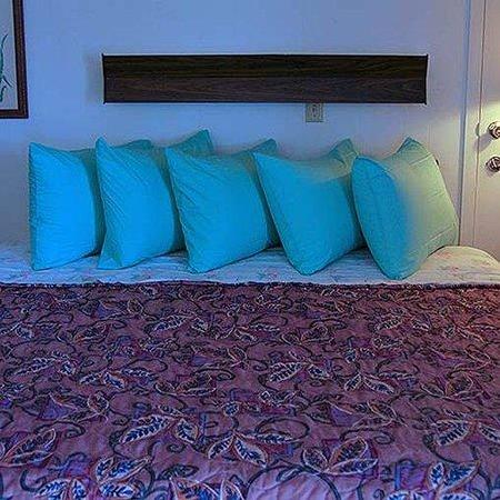 Rainbow Motel Hastings Room