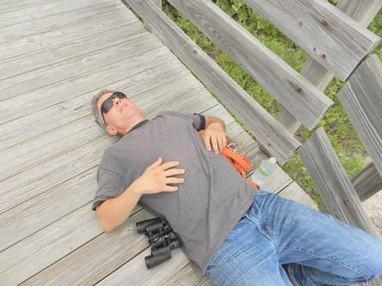 John D. MacArthur Beach State Park: What my husband enjoys doing once we get to the beach