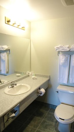 Comfort Suites Downtown: Bathroon
