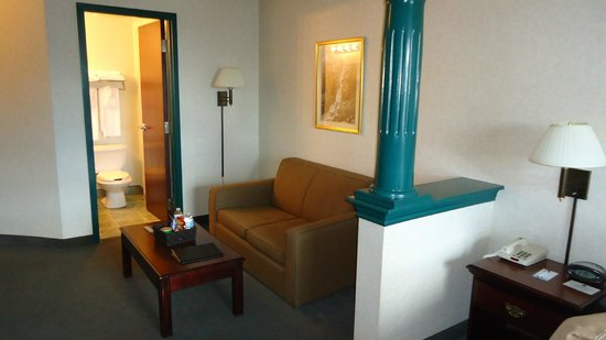 Comfort Suites Downtown: Living Area