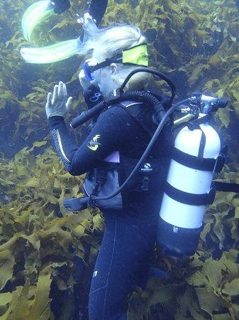 Dive Tutukaka: Marion, Dive Guide Extraordinaire!
