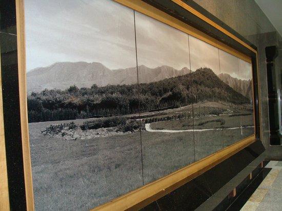 พิพิธภัณฑ์สุสานจิ๋นซี: Foto da fazenda antes das escavações.