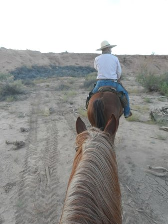 Paria Canyon Guest Ranch: Riding in the canyon