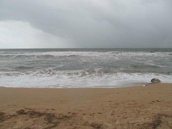 Heritance Ahungalla: la plage... baignade interdite