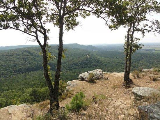Mather Lodge: view at Petit Jean Mountain