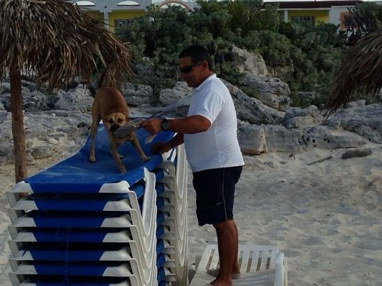 "Hotel Pelicano: Roberto ""kico"" et Lola"
