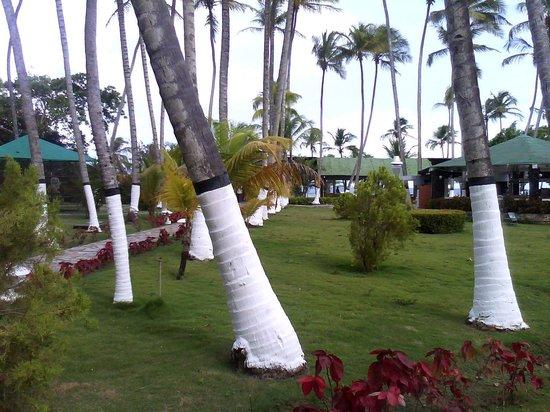 Bella Vista Hotel: Area recreativa