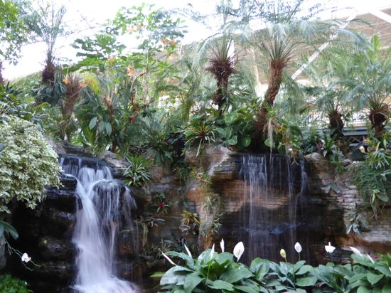 Gaylord Opryland Resort & Convention Center: Waterfall