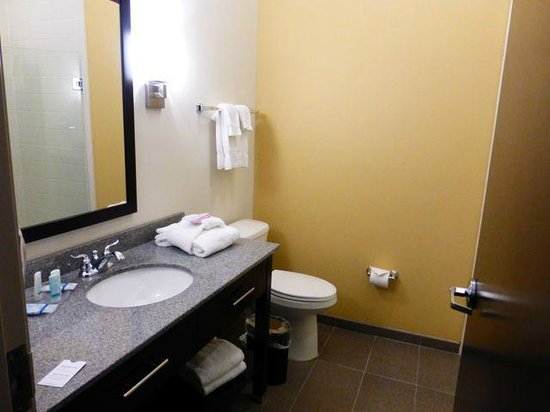 Sleep Inn & Suites Medical Center: Bathroom photo
