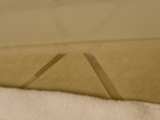 Gaylord Opryland Resort & Convention Center: Hairs in the bathroom