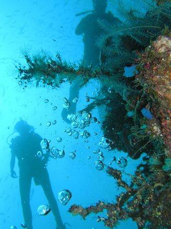 Santai Hotel Bali: Diving & Snorkeling
