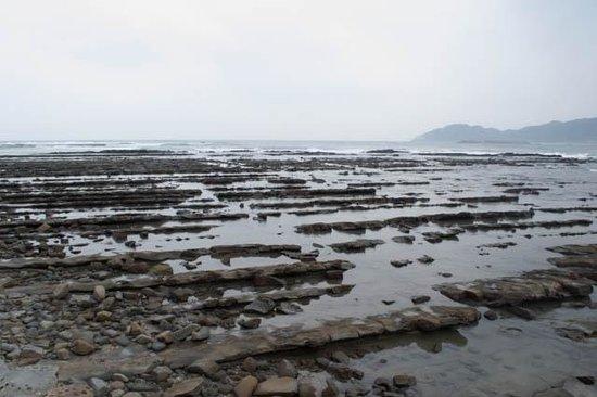 Aoshima Island: Devil's washboard