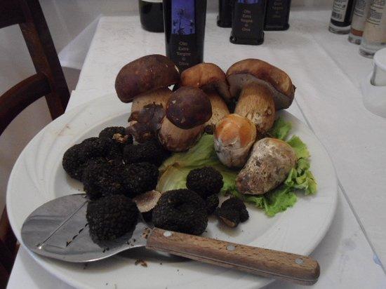 Trattoria Toscana: Primizie ,tartufi , ovoli e porcini