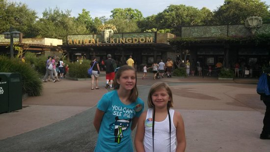 Walt Disney World Resort: Animal Kingdom