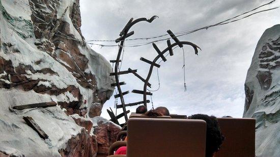 Walt Disney World Resort: Expedition Everest