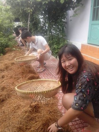 Lovely time to pick up rice Mushrooms in HCM Cooking class garden
