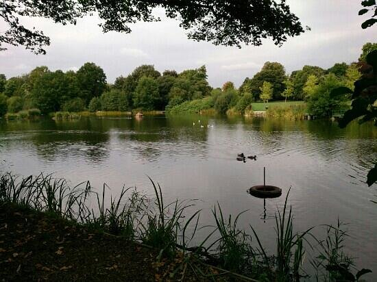 Acton Park Wrexham Wales Top Tips Before You Go With Photos