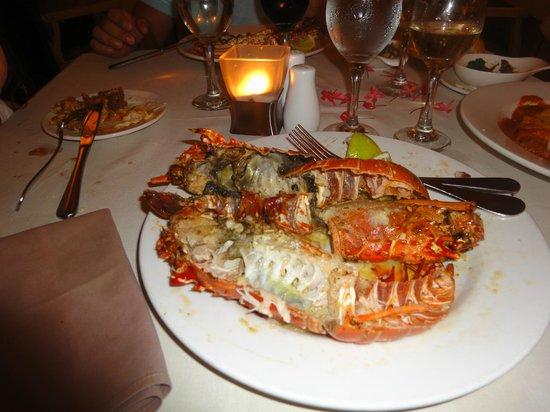 Catalonia Bavaro Beach, Casino & Golf Resort: Lobster ($19)