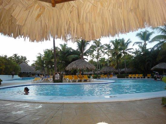 Catalonia Bavaro Beach, Casino & Golf Resort: Kids swimming pool