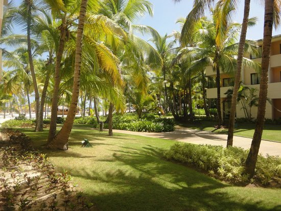 Catalonia Bavaro Beach, Casino & Golf Resort: Grounds