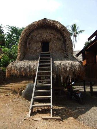 Taman Nusa: From the Sasak area.