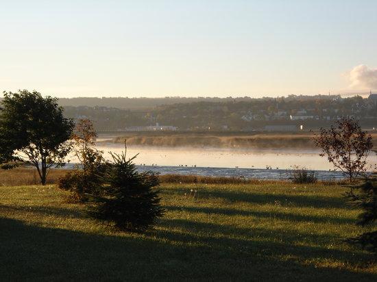 Motel Loupi: bord de rivière dans la brume