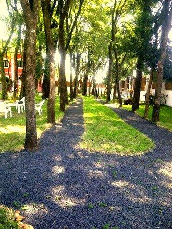 Elegance Palace Hotel: amplia arboleda, y lugar para caminata