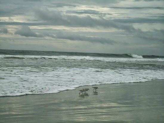 Ormond Beach Morning